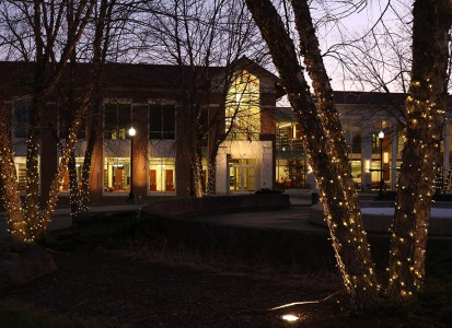 christmas lights around the trees in front of the Smith Library on campus